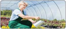 Zahradní fóliovníky
